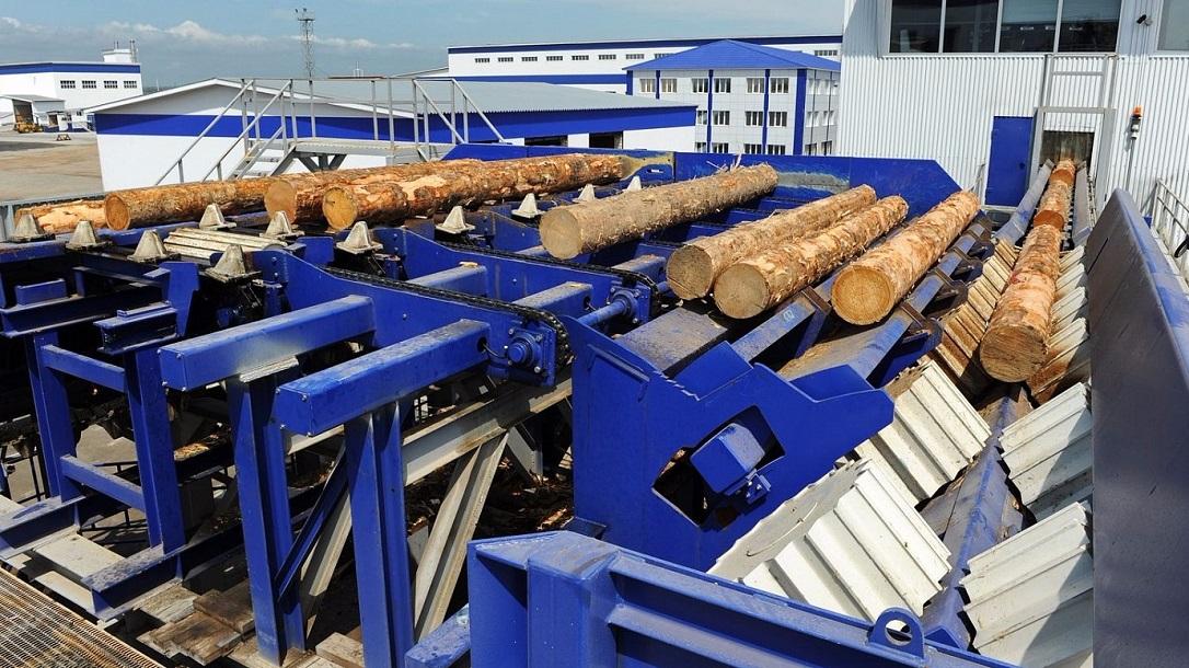 Крупная лесопромышленная корпорация